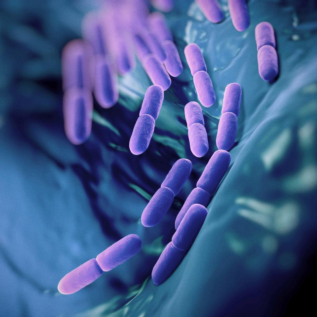 Как выбрать пробиотики для кишечника