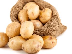 Отравление картофелем человека: первая помощь и методы лечения