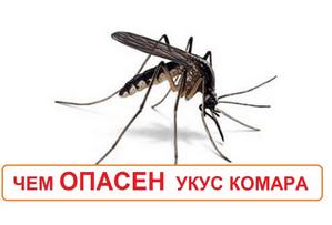 Чем опасны укусы комаров