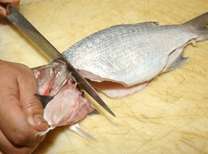 Ботулизм в рыбе