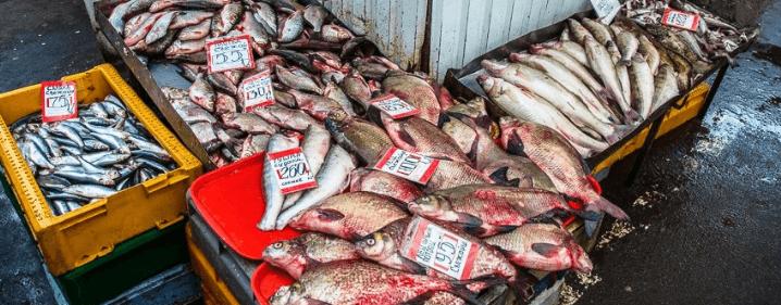 симптомы отравление рыбой