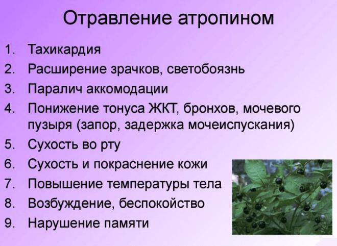 Отравление атропином симптомы