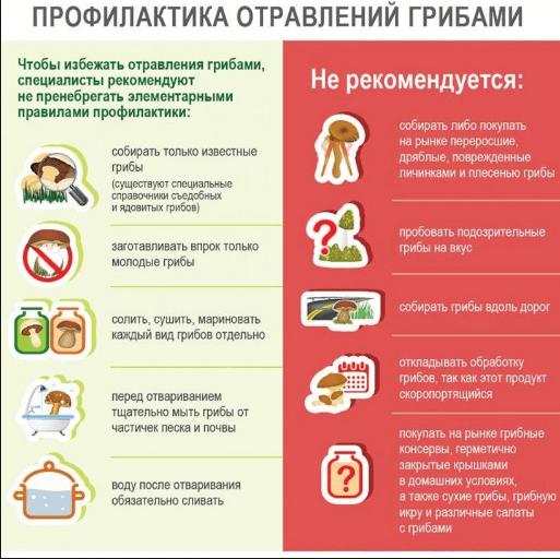 профилактика при отравлении грибами