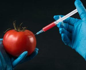 отравление селитрой смертельная доза