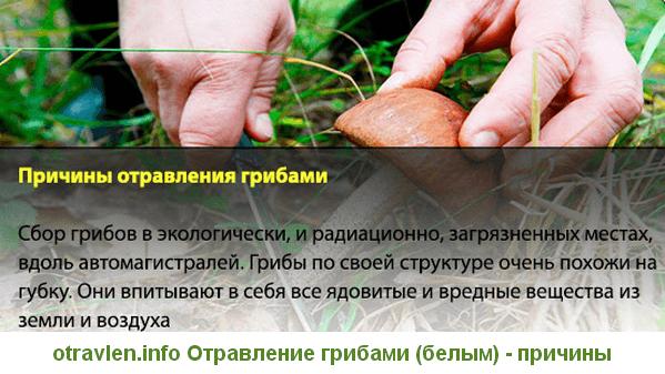 симптомы при отравлении белыми грибами