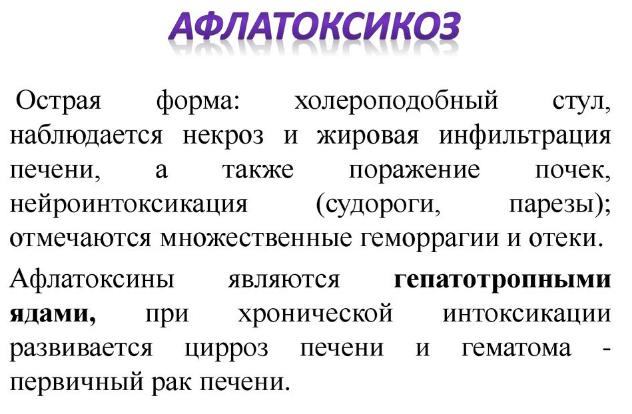 Афлатоксикоз - что это такое