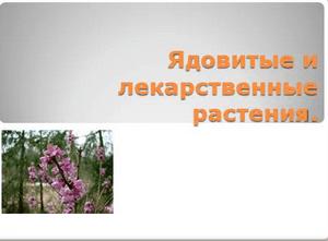 Ядовитые растения - для лекарств