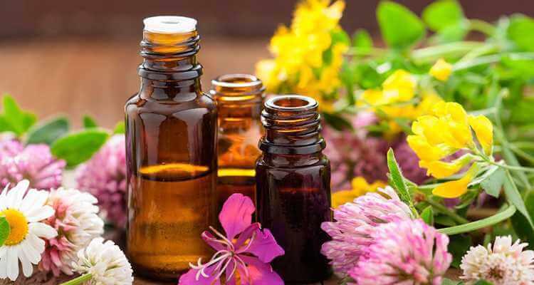 Основы ароматерапии в домашних условиях