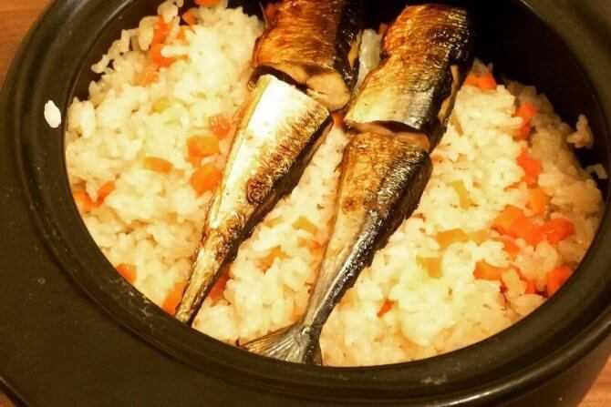 Консервированная сайра: польза и вред известного морепродукта