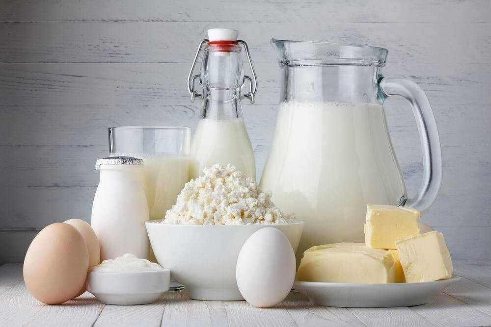 Вредны ли молочные продукты для организма человека?