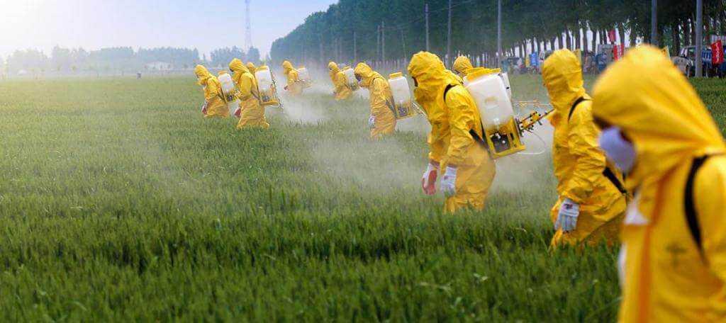 Как распознать острое отравление пестицидами?